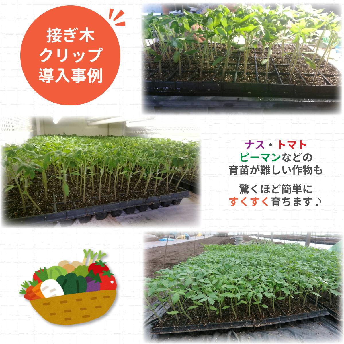 接ぎ木クリップ 100個入 | オリジナル園芸資材販売|株式会社RIRAI